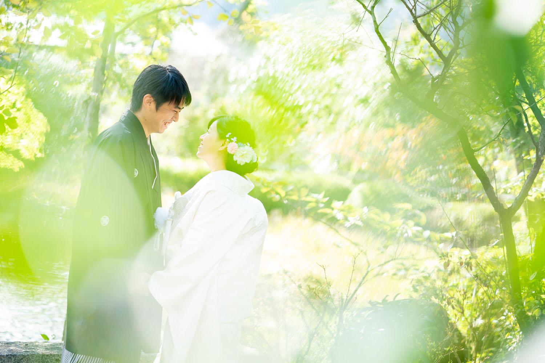前ボケイメージの婚礼写真