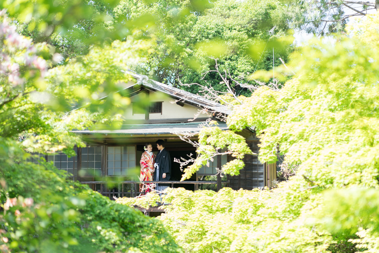 緑に包まれる参集殿。(京都の梅宮大社)